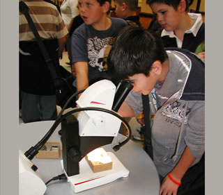 Students work with a microscope