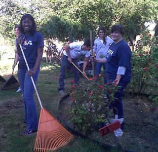 volunteers1