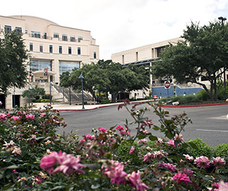UTSA education, counseling programs rank among nation's top