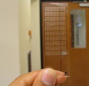 nanochip
