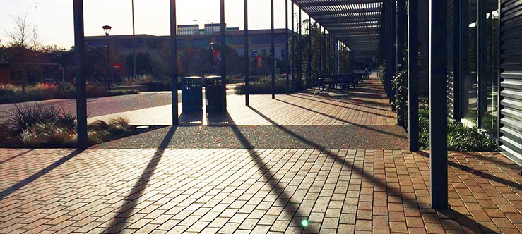 UTSA photo of the day