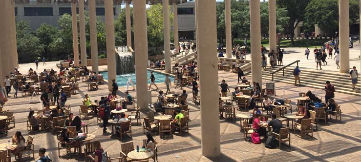 Utsa Photo Of The Day Back At The Sombrilla