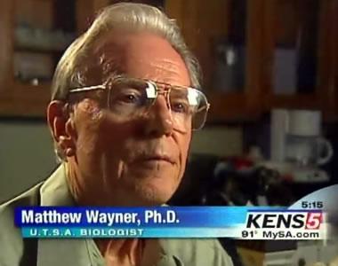 Matthew Wayner